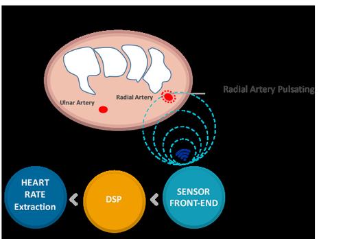 sensifree-biometric-sensor